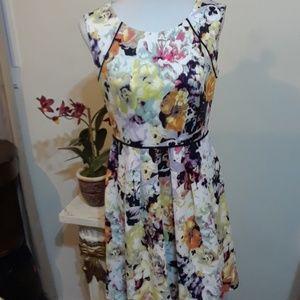 NWOT Beautiful Tahari Petites Dress